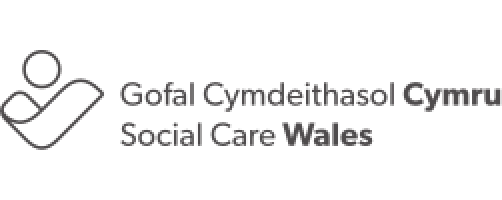 The domiciliary care worker app
